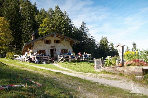 Wanderung mit Hund zur Staudacher Alm und Schnappenkirche Marquarstein Chiemgau
