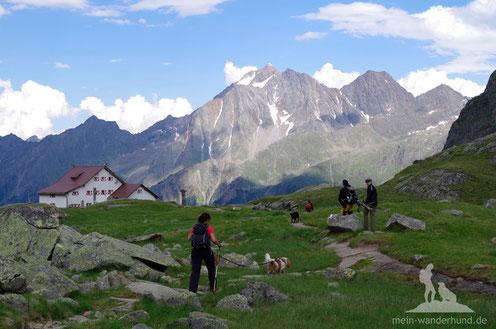 Hütte mit Hund mein wanderhund Andrea Obele