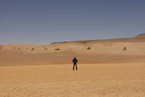In der Salvador-Dalí-Wüste