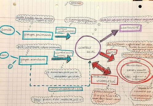 schéma d'Amélie S.