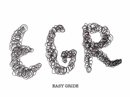 """""""EGR""""モデルマークはブラックとホワイトがあります。"""