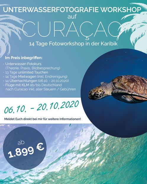 Unterwasserfotografie Workshop Fotoreise Fotografie Unterwasser Curacao