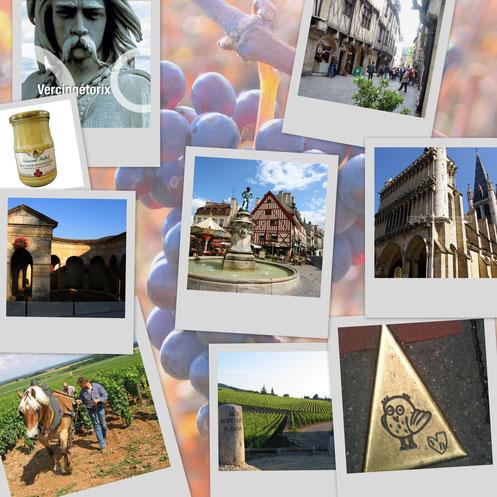 Dijon et ses environs