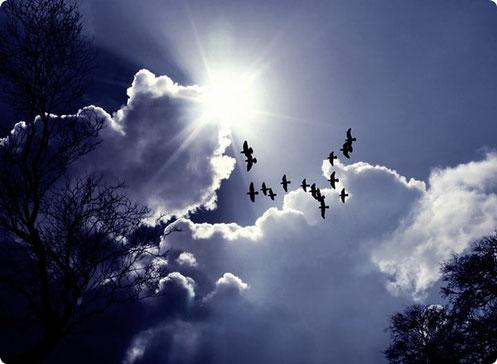 """Erfahrungen mit Seelenreisen: """"… das Schweben durch die Galaxie, so als würde man wirklich fliegen…"""""""
