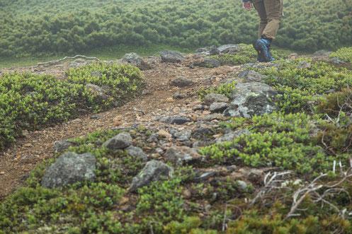 歩きすぎて腰が痛い奈良県五條市の男性