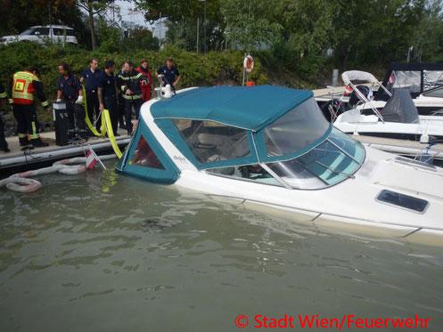 Feuerwehr; Blaulicht; Berufsfeuerwehr Wien; Yachthafen Marina; Bergung; Sportboot;