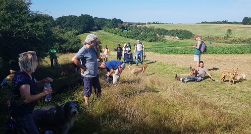 Kurztour am 11.08.2019 / Pause bei herrlichen Wetter am Kochhartgraben