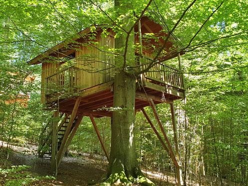 Baumhaus Refugium im grünen Wald, Juni 2019