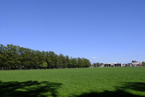 大人も子供も楽しめる。自然豊かな緑ヶ丘公園。 - お菓子な ...