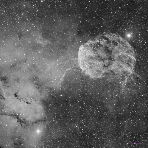 The Jellyfish Nebula IC443