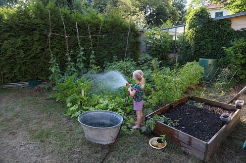 Meine kleine Helferin - ohne sie würde die Gartenarbeit nur halb so viel Freude machen ...
