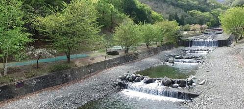 ウエストリバーオートキャンプ場川遊び