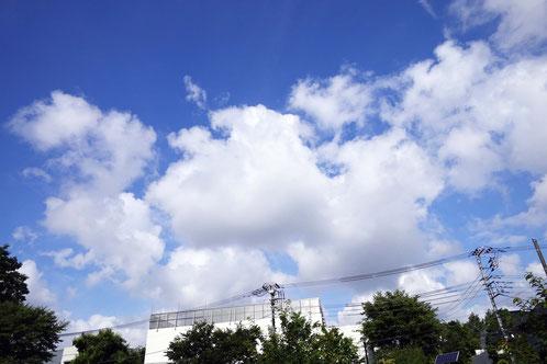 今日、ホントにすがすがしい青空だったよね。雲もプカプカうれしそう♪