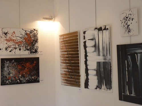 Galerie Rivaud - POITIERS (86) - mars 2012