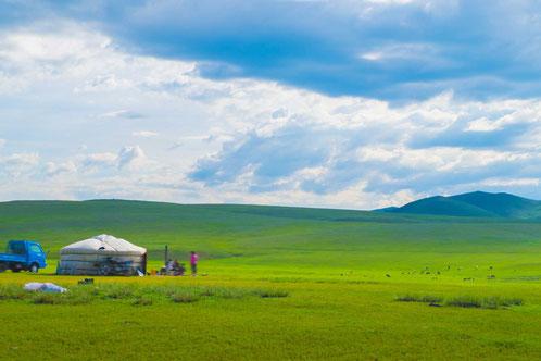 緑の草に覆われた高原とゲル