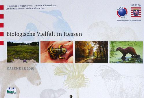 Hessischer Ministeriums - Kalender 2015 mit einem Bild eines Fischotters von mir.