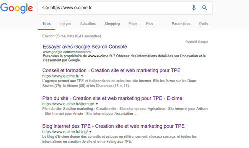 pages indexees par Google pour e-cime.fr consultant formateur en creation de site web pour TPE