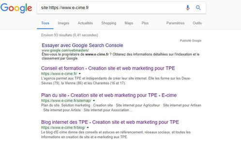 pages indexees par Google pour e-cime.fr consultant formateur en creation de site web pour TPE