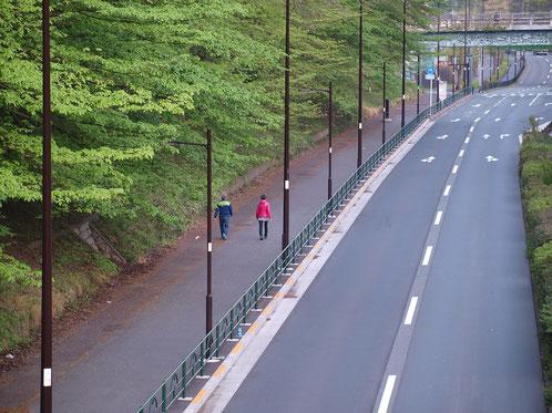 4月14日(2015)「ノビタキ」の休息:三鷹市にお住まいの武田さんのご投稿写真:4月11日に野川沿いで撮影