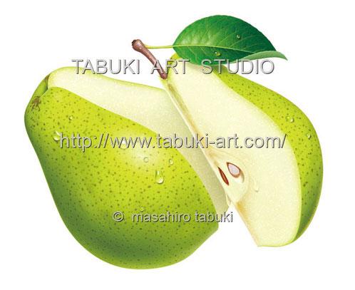 ジューシー フルーツイラスト fruit illustration