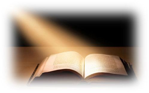 Les 2 Témoins ne sont pas humains. Ils apportent la connaissance directement d'auprès de Dieu et ne sont soumis à aucune interprétation humaine ni à aucune organisation religieuse.