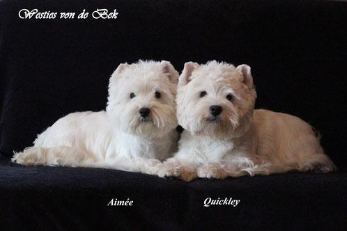 Glencoe´s Quickley und Aimée