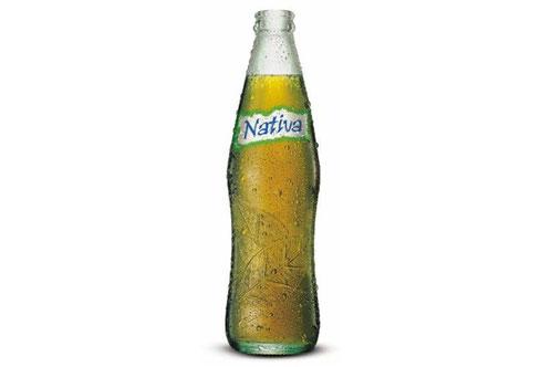Nativa se lanzó al mercado argentino en noviembre de 2003, apenas ocho meses después dejó de fabricarse.
