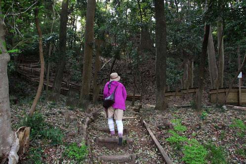 神奈川県の里山公園  駐車場が閉まるまで1時間半