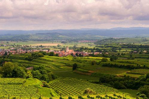 La région des vignobles