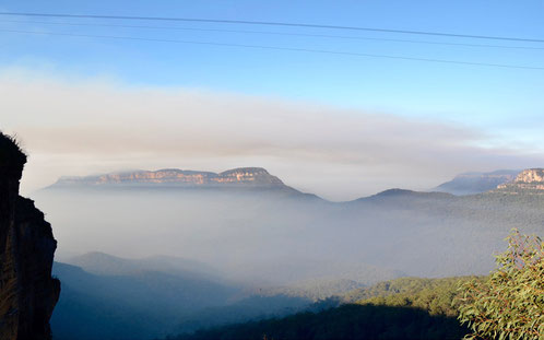 Wanderweg am Echo Point in den Blue Mountains mit Morgennebel