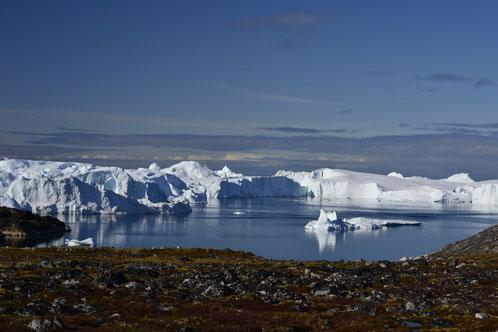 Ilulissat, Eisberge im Fjord
