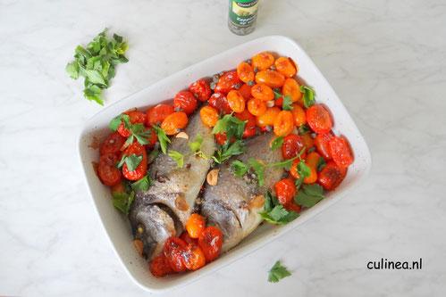 Dorade met tomaatjes uit de oven