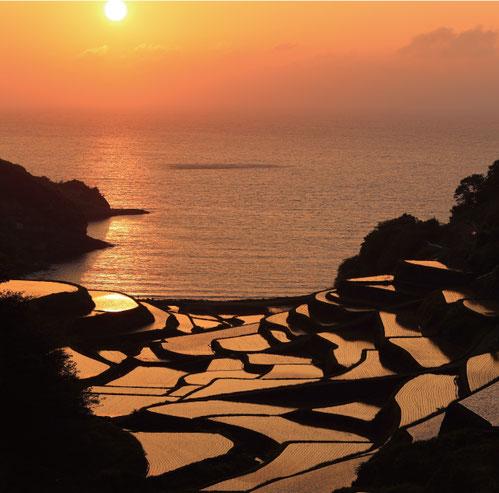 農林省主催「日本の棚田百選」にも選ばれた 玄海町「浜野浦の棚田」