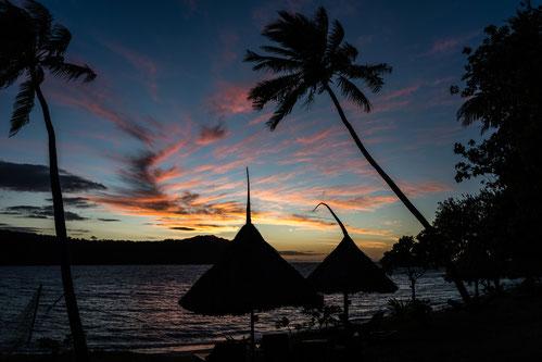 Sunset on Fiji with palms