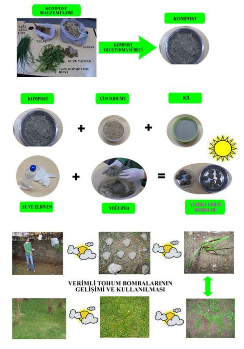 verimli tohum bombası