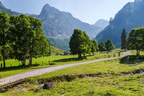 Was uns bewegt:   - Waldbaden - Barfußwandern - Kraftplatzwanderungen - Kräuter- und Alpenblumenwanderungen - Den Wald begreifen - speziell für Kinder - Smovey-Kurse