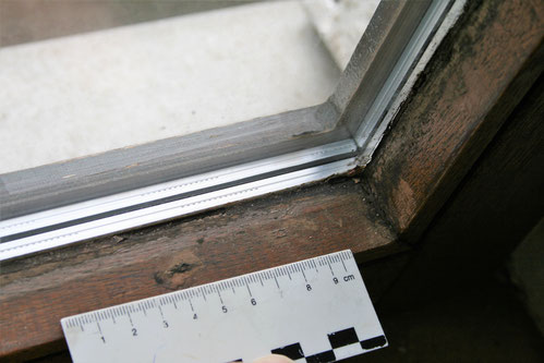 Schimmelpilze am unteren Holm eines Holzfensters.