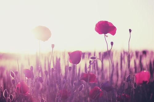 Seelenreisen erinnern uns wieder an Leichtigkeit und Freude.