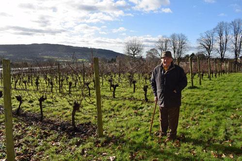 english-vineyard-winery-bath-mumfords-vineyard