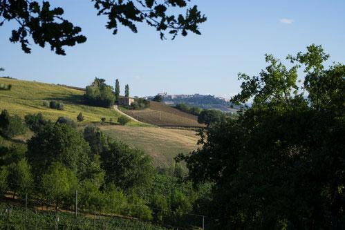Die Locanda liegt in der Hügellandschaft der Marken
