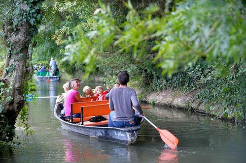 Balade en barque dans le Marais Poitevin situé à 20 minute de notre maison d'hôtes