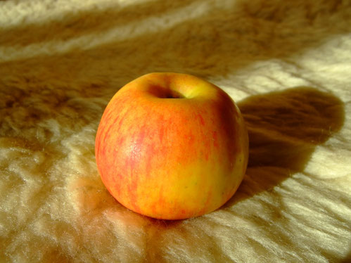 Sexualität und Spiritualität - die verbotene Frucht?