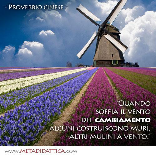 """""""Quando soffia il vento del cambiamento alcuni costruiscono muri, altri mulini a vento."""" - (Proverbio cinese)"""
