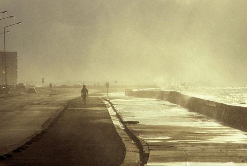 Havanna Ufer © rheinmainbild.de/Peter Wichmann (alle Fotos des Artikels)