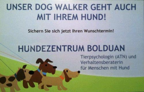 Hundespaziergang Dogwalker Pack Leader, Wunschtermin buchen, Abholservice