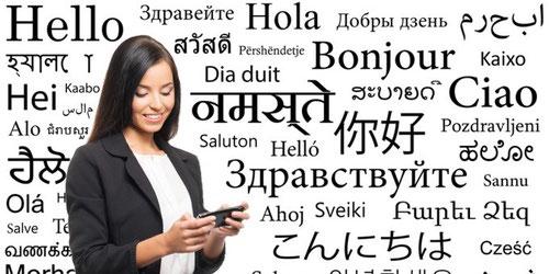 Willkommen in der Übersetzerwelt