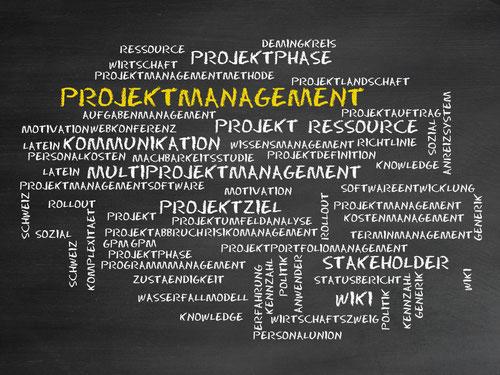 Projektmanagement, Wasseraufbereitung, Umkehrosmose, Kreuzfahrt