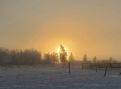 I love sunrises through hoar frost and fog, they make the best pictures.