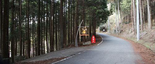 林道からの入口