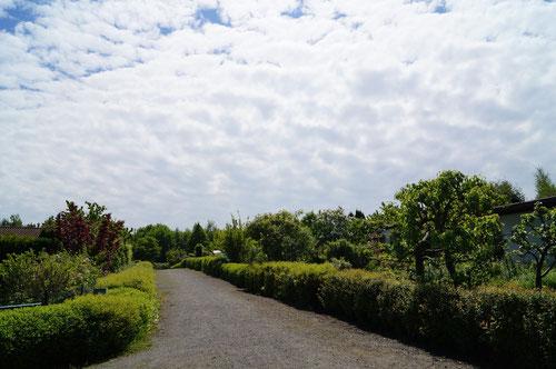 Kleingartenanlage Brühl, Eingangsweg
